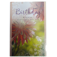 Birthday (8)
