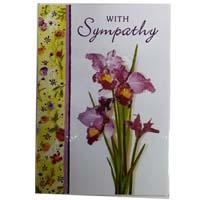 Sympathy (15)
